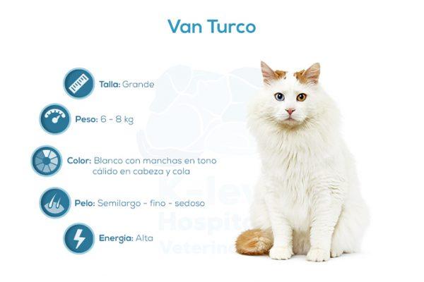 Van Turco