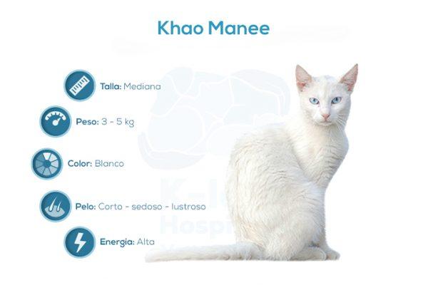 Khao Manee